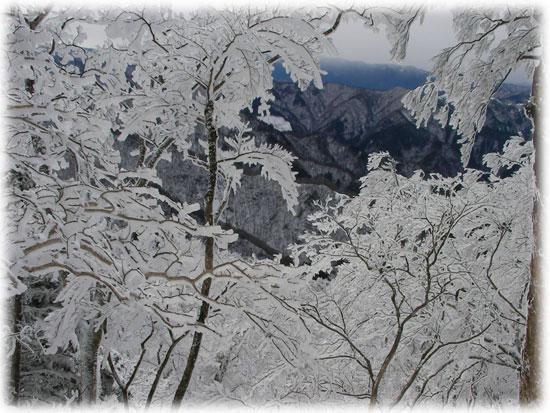 明神岳樹氷08.2.2001