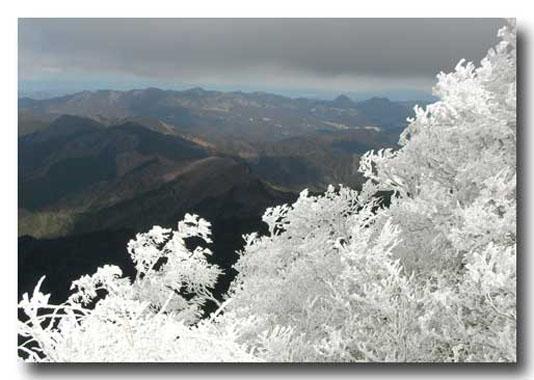 09年2月17日高見山1001